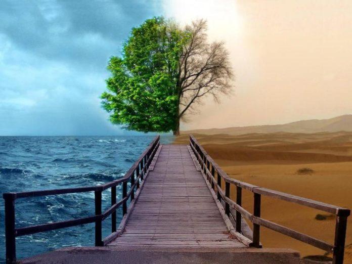 Дуальность мира, в котором мы живём